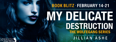 my delicate destruction the wolfegang series jillian ashe xpresso book tours banner