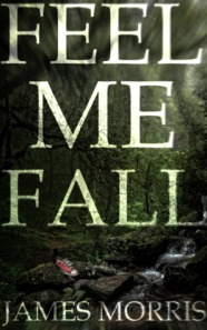 Feel Me Fall james morris book cover