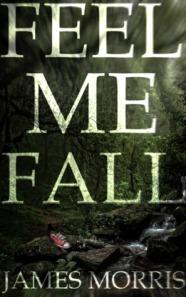 Feel Me Fall james morris book cover