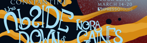 The Upside Down of Nora Gaines Blitz Banner