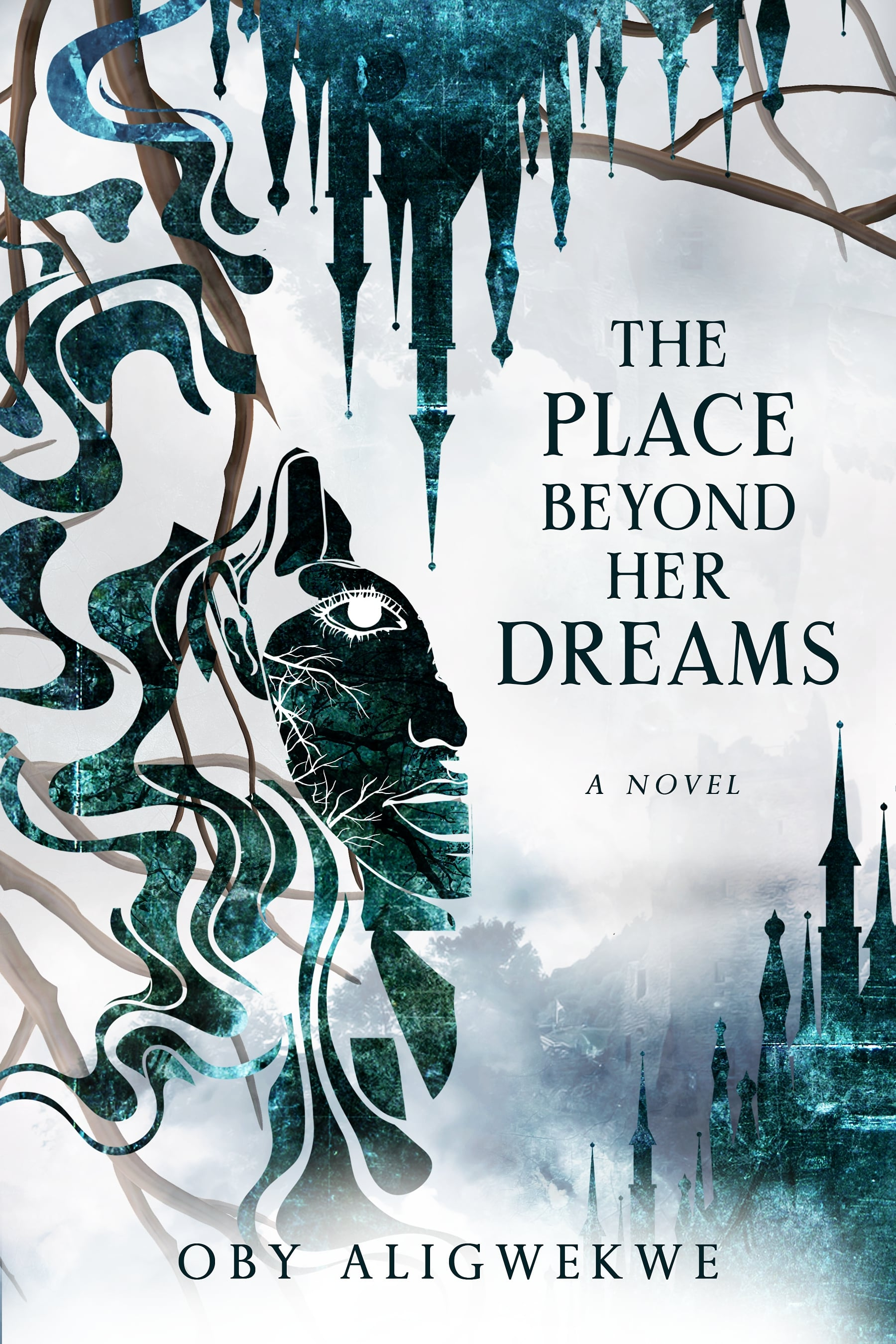 The Place Beyond Her Dreams book cover
